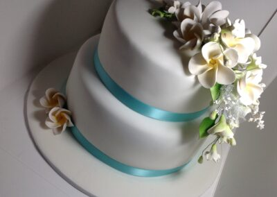 19032016-Hayley-Stevens-2-tier-wedding-cake-frangipanis-angle-shot