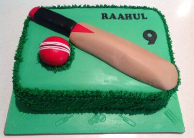 Cricket-16122016