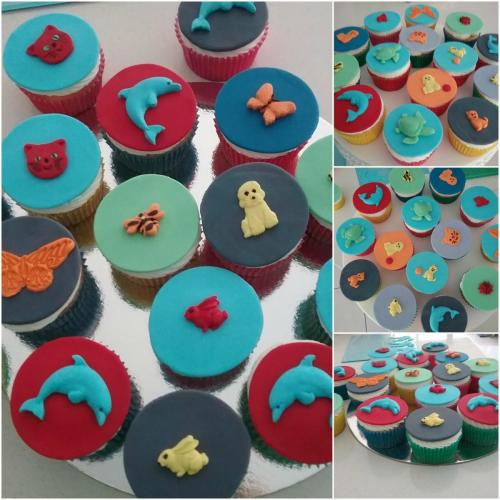 Cupcakes for Childs birthday.